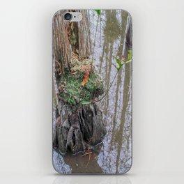 The  Swamp Fairy's Home iPhone Skin
