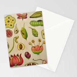 botany Stationery Cards