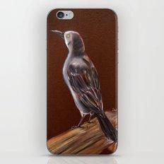 Carib Grackle iPhone & iPod Skin