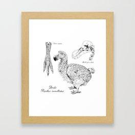 The last Dodo - scientific illustration Framed Art Print