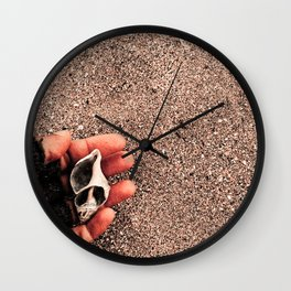 From a Shell Wall Clock
