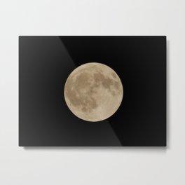 Luna Belle Metal Print