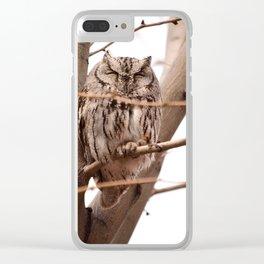 Wild Owl - Ivins, Utah Clear iPhone Case