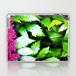 garden 6 Laptop & iPad Skin