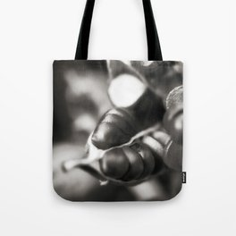 Flag Iris Seed Pod 1 Tote Bag