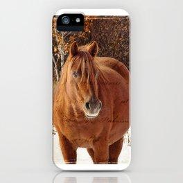 Little Red Mare Design iPhone Case