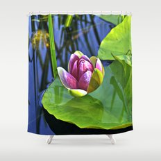 Summery Ode to the WATER LILY  Shower Curtain