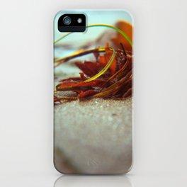 Sea Ranch seaweed I iPhone Case