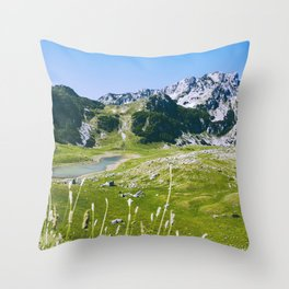 Mountain landscape. Summer. Throw Pillow