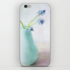simply spring iPhone & iPod Skin