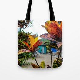 Dreamy Mexican Garden Tote Bag