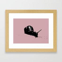 Pink Snail Framed Art Print