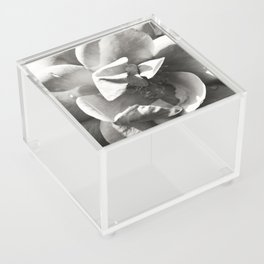 Secret Garden Acrylic Box
