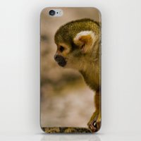 monkey island iPhone & iPod Skins featuring Little Monkey by Glory Baby Photography