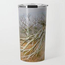 Cape Hatteras Lighthouse thru the Trees Travel Mug