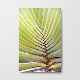 Green leather Metal Print