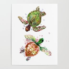 Turtles, Olive Green Cherry Colored Sea Turtles, turtle Poster