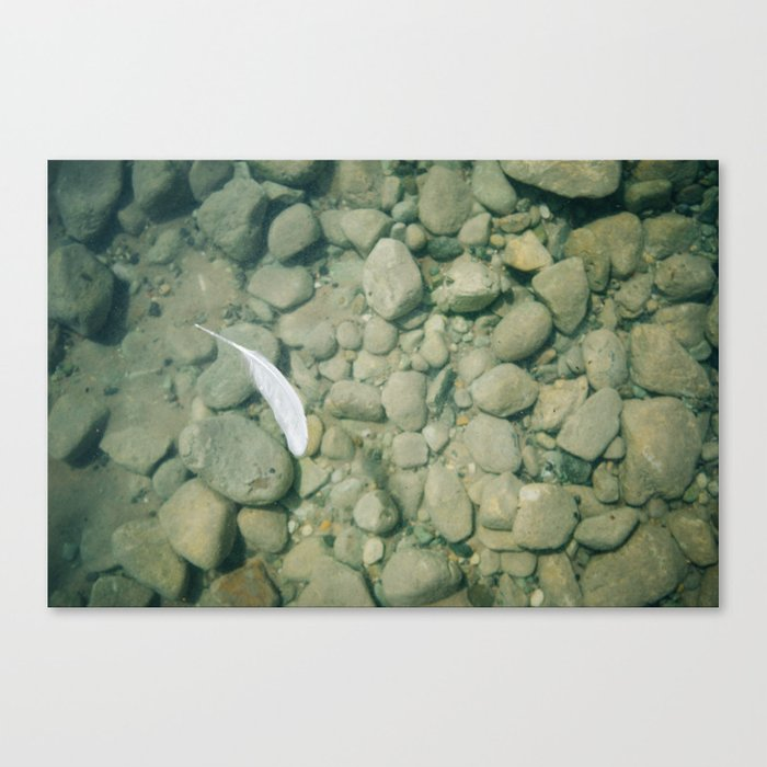 Feather In Walloon Canvas Print