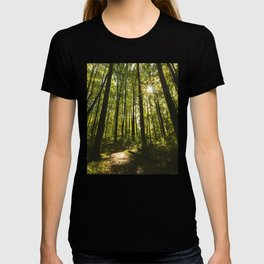 Shenandoah Park T-shirt
