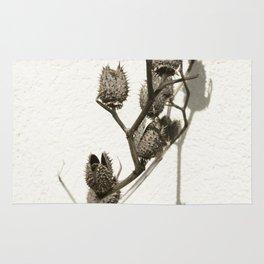 Dry plant Rug
