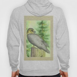 Merlin Falcon Hoody