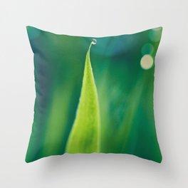 grass and bokeh Throw Pillow