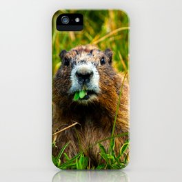 Mid-Morning Snack iPhone Case