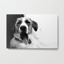 big yawn Metal Print