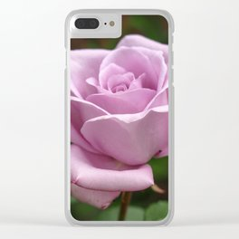 Rose Bloom, variety Blue Moon Clear iPhone Case