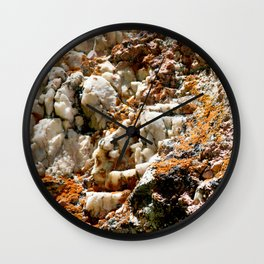 Watercolor Rock, Pegmatite 02, RMNP, Colorado, Lichen Encrusted Wall Clock