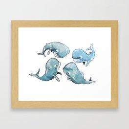 Whale talk Framed Art Print