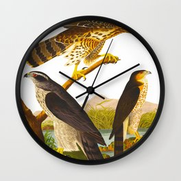 Goshawk Bird Wall Clock