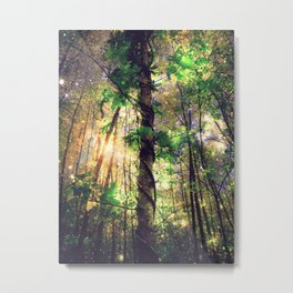 Forest of the Fairies Enchanted Dusk Metal Print