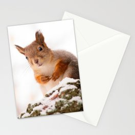 Squirrel in first snow #decor #buyart #society6 Stationery Cards
