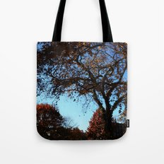 fallday Tote Bag