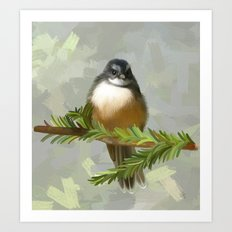 Fantail chick Art Print