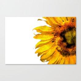 Simply a sunflower Canvas Print