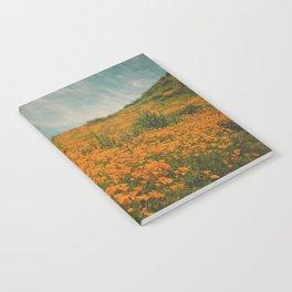 California Poppies 016 Notebook