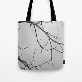 Cold Grey Sky Behind Leafless Tree Branches Tote Bag