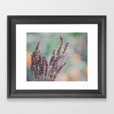 Lavender by the window Framed Art Print