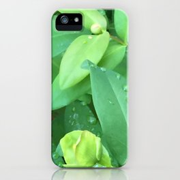 Kubota Garden green plant leaves with water drops iPhone Case