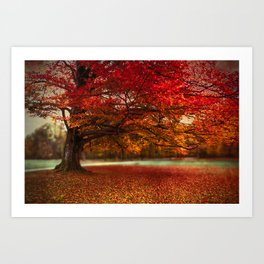 Finest fall Art Print