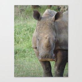 Swazi Hello Canvas Print