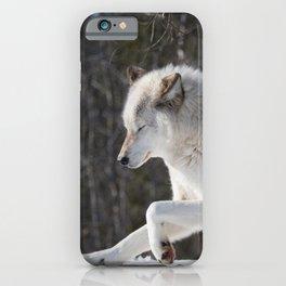 Wolf 3 iPhone Case