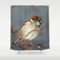 sparrow Shower Curtains featuring Sparrow  by Barbo's Art
