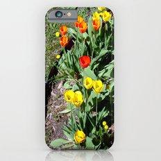 Tulip Garden ~ spring flowers for u Slim Case iPhone 6s