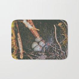 Hidden Gems • Appalachian Trail Bath Mat