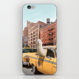 Alpaca in New York iPhone Skin