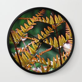 NEW FERN FRONDS IN AFTERNOON LIGHT Wall Clock