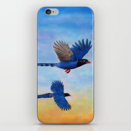 Taiwan Blue Magpies (2) iPhone Skin